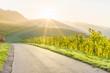 canvas print picture - Sonnenaufgang im herbstlichen Weinberg