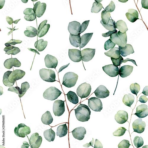 akwarela-wzor-z-okraglych-lisci-eukaliptusa-recznie-malowane-dziecko-i-galaz-eukaliptusa-srebrny-dolar-na-bialym-tle-kwiatowa-ilustracja-do-projektowania-drukowania-tkaniny-lub-tla