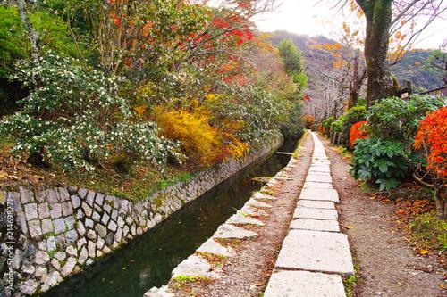 Foto auf Leinwand Garten 晩秋の京都、朝の哲学の道からみた景色