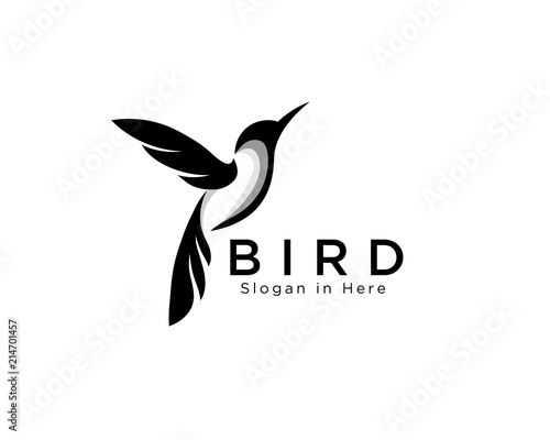 Photo elegant art hummingbird fly logo