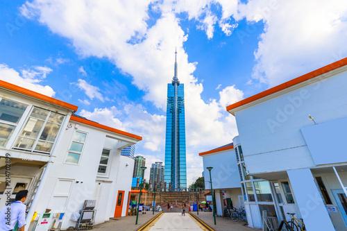 Fotografia 福岡タワー 外観