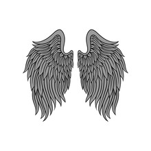 Big Open Angel Wings With Gray...