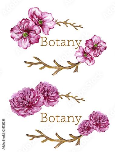 akwarela-gwasz-kolorowy-kwiatowy-kolekcja-z-lisci-i-kwiatow