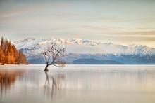 Lake Wanaka Otago New Zealand