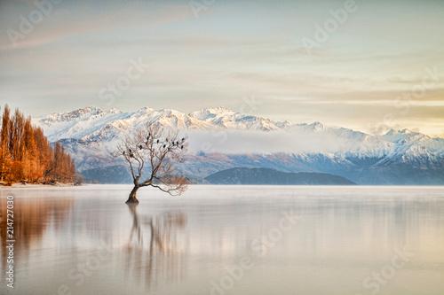 Lake Wanaka Otago New Zealand Canvas Print