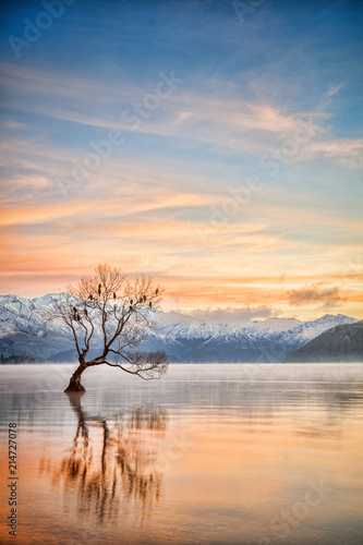 Photo  Lake Wanaka Otago New Zealand