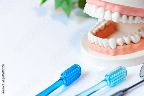 Stampa su Tela  歯周病予防