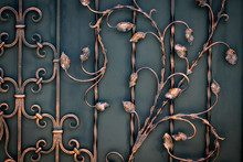 Beautiful Decorative Metal Elements Forged Wrought Iron Gates