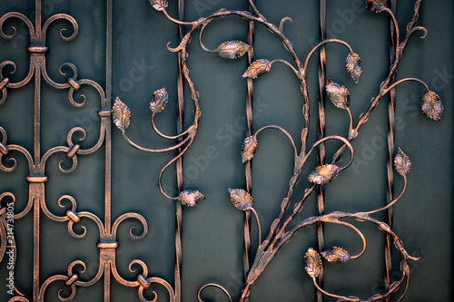 Photo beautiful decorative metal elements forged wrought iron gates