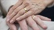 canvas print picture - Portrait of older senior hands with wedding rings on