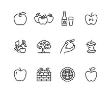 Apples Flat Line Icons. Apple Picking, Autumn Harvest Festival, Craft Fruit Cider Illustrations. Thin Signs For Organic Food Store. Pixel Perfect 48x48. Editable Strokes.
