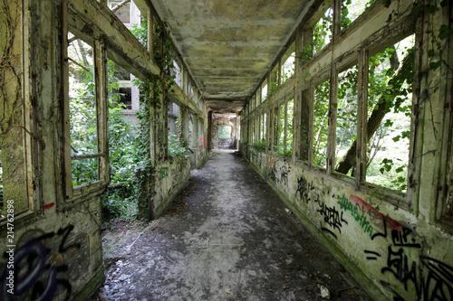 Fotografiet Aincourt - Sanatorium Abandonné