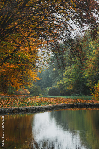 Foto op Aluminium Chocoladebruin Idillic autumn landscape of park, lawn, yellow trees and lake