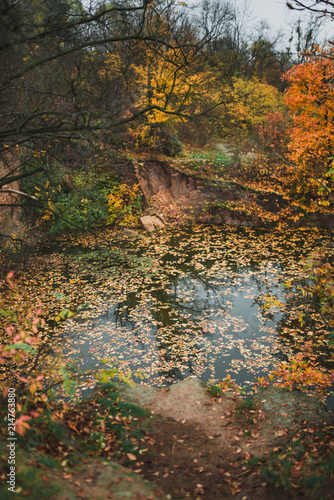 Deurstickers Herfst Idillic autumn landscape of park, lawn, yellow trees and lake