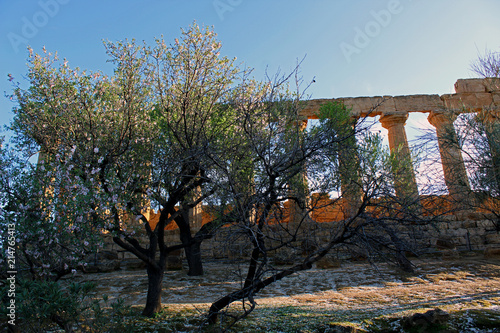 Foto op Aluminium Grijze traf. Valle deti Templi, Agrigento