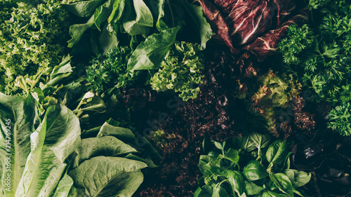 Fototapeta  top view of different leafy vegetables and herbs on table
