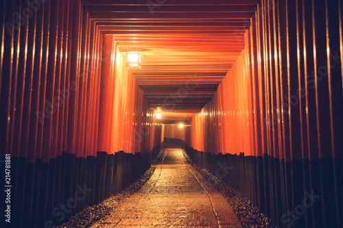 Fotografie, Obraz Pathway orii gates at Fushimi Inari Shrine at night and rain Kyoto, Japan