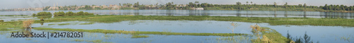 Foto op Plexiglas Rivier View of river nile in Egypt showing Luxor west bank and reeds