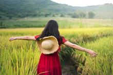 Girl Walking In A Rice Field Wearing Red Dress