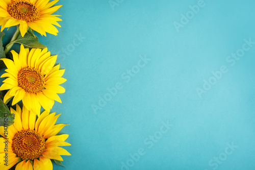 Photo sur Aluminium Tournesol Beautiful sunflowers on blue background. View from above. Background with copy space.