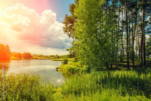 Fotografia Beautiful nature, lakeshore, and pine forest in the evening