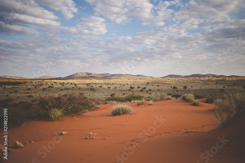 Foto op Canvas Bleke violet Panoramic landscape photo views over the kalahari region in South Africa