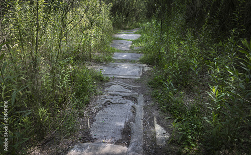 Photo The path from the Jewish tombstones in the Liban quarry, which was a part of the