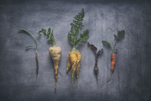 Organic Root Vegetables On Weathered Scratchy Background