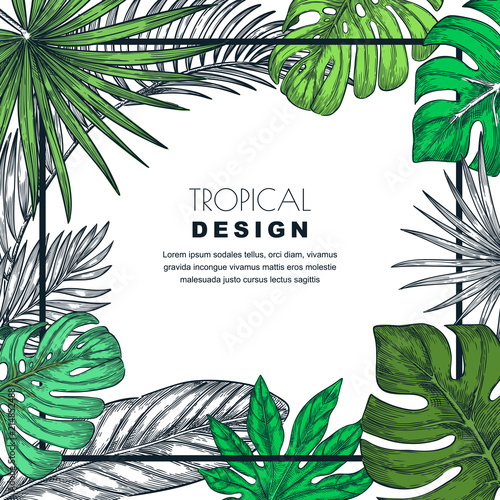 60544236eb4 Tropical frame with palm leaves. Vector sketch illustration of jungle  plants. Poster
