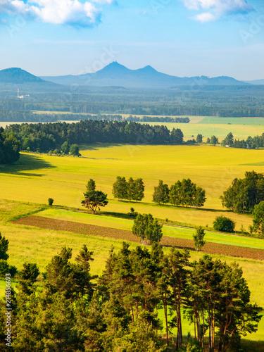 Tuinposter Oranje Landscape around Bezdez Castle on sunny summer day. Czech Republic.