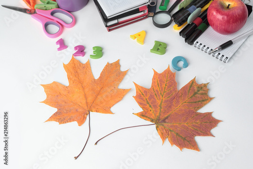 Fotografía  image of colorful school supplies on white background
