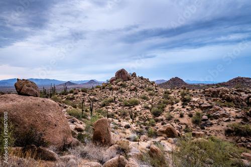 Foto op Aluminium Cappuccino Desert Landscape