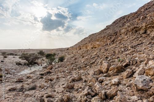 Fotografie, Obraz  A wadi near Abu Jifan Fort, Riyadh Province, Saudi Arabia