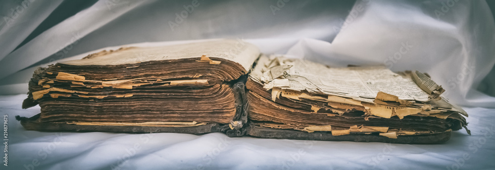 Fototapety, obrazy: The old antique scruffy book