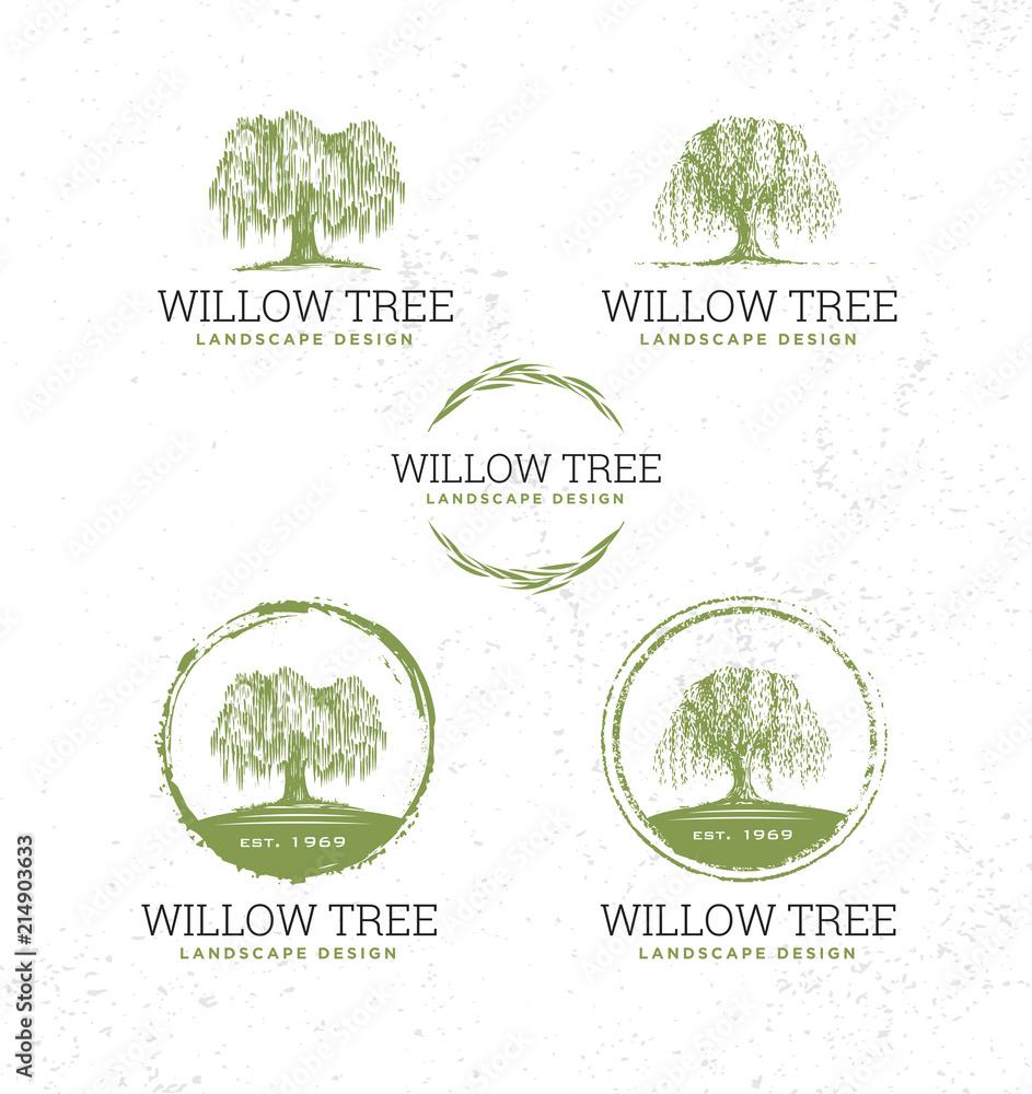 Fototapeta Willow Tree Landscape Design Creative Vector Nature Friendly Sign Concept. Sustainable Eco Illustration