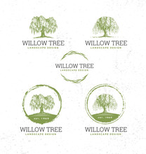 Willow Tree Landscape Design C...