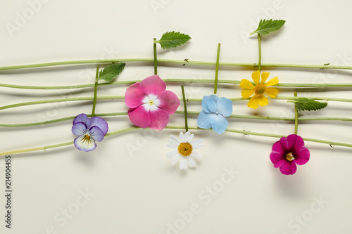 Poster Printemps Music notes of flowers