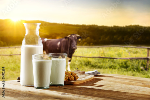 Photo of milk and cow