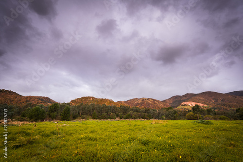 Spoed Foto op Canvas Bleke violet Scenic Australian countryside panoramic landscape with dramatic clouds in background, Adelaide Hills, South Australia