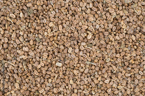 celery seed background