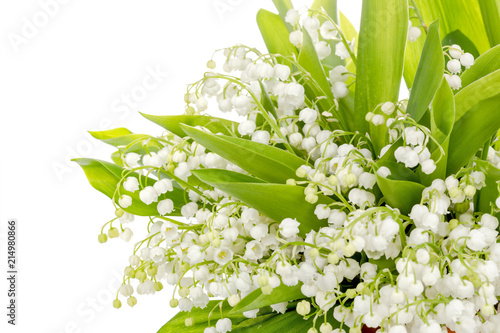 Wall Murals Lilly of the valley flowers isolated on white