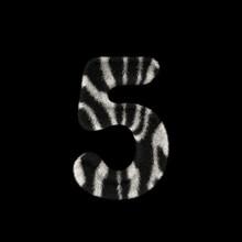 3D Rendering Creative Illustration Zebra Print Furry Number 5