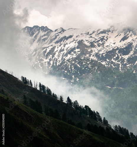 Fotobehang Alpen Mist Raising Above the Treeline in the Snowy Mountains