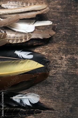 Fotobehang Jacht Còmhla-bhigein Uccellagione Vogelfalle Čižba Bird trapping