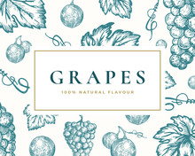 Hand Drawn Grapes Illustration...