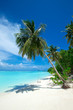 tropical beach in Maldives with blue lagoon