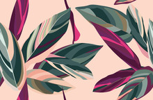 Leaves Of Cordelia On A Pink Background. Floral Seamless Pattern.