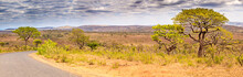 The Landscape Of The Hluhluwe-umfolozi Game Park, Kwa-zulu Natal, South Africa.