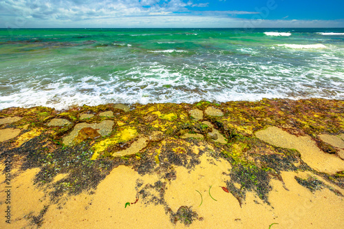 Foto op Canvas Australië Mettams Pool a limestone bay safe for snorkelling place. Trigg Beach in North Beach near Perth, Western Australia. Mettam's is a natural rock pool protected by a surrounding reef.