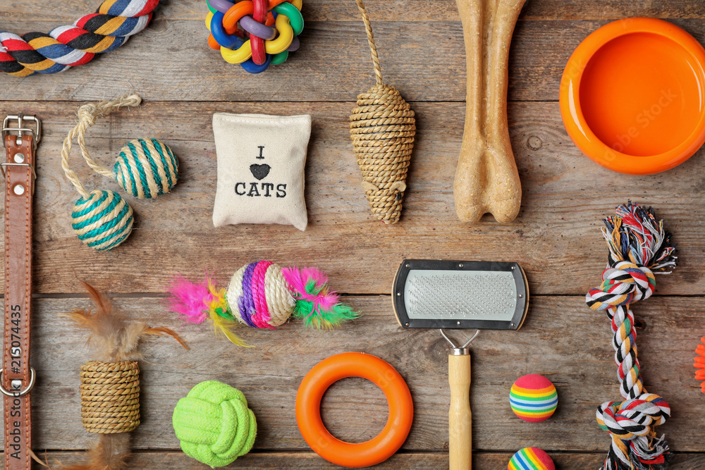 Fototapety, obrazy: Flat lay composition with accessories for dog and cat on wooden background. Pet care